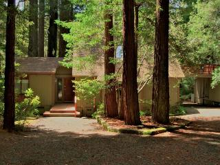 Pet-friendly home w/deck; fireplace; walk to beach - Mendocino vacation rentals