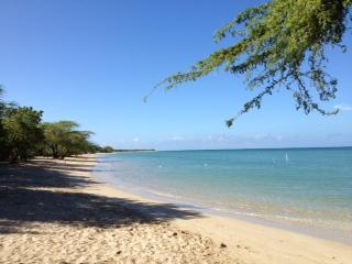 Southwest PR-Cabo Rojo/FREE WiFi/ Stunning Beaches G - Lajas vacation rentals