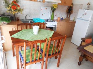 Beautifull house - Vela Luka vacation rentals
