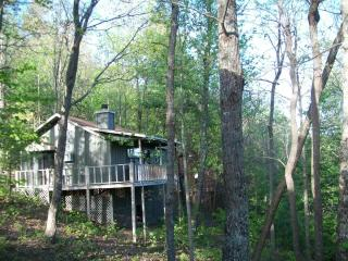 $399 week special-Helton Falls Lodge-Owl's Nest - Blairsville vacation rentals