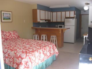 Sandpiper 5 of Friday Harbor (Studio) - Friday Harbor vacation rentals