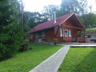 Beautiful and cosy chalet in the middle of the nature - Campeni vacation rentals