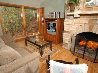Creekside Cabin Pet friendly cabin on the creek... - Gatlinburg vacation rentals