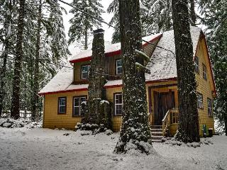 Large home-stone fireplace-Hot Tub-wifi - Rhododendron vacation rentals