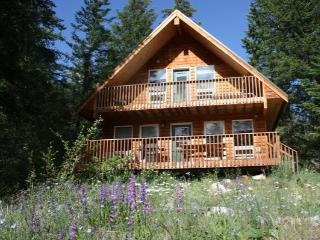 Charming Methow Valley Cabin on Fawn Creek - Winthrop vacation rentals