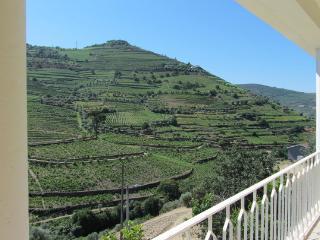 Casa Amarela - Douro Wine Region - Baiao vacation rentals