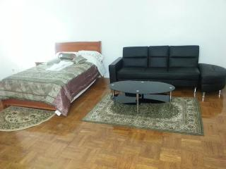 Large Deluxe Bachelor Apartment - Toronto vacation rentals