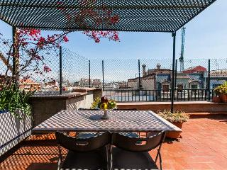 Amazing terrace in Barcelona centre, up to 5 guests! - Barcelona vacation rentals