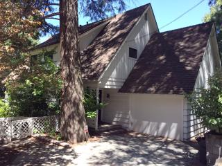 Lakefront Lake Arrowhead Home With Hot Tub & Dock - Lake Arrowhead vacation rentals