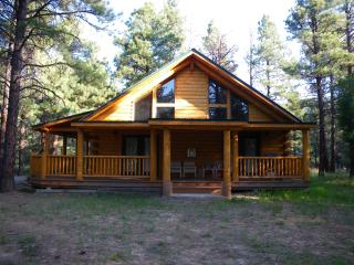 Enchanting cabin in  Chama - Chama vacation rentals