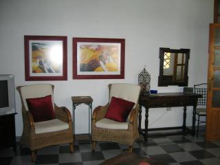 Salobrena, Spain 3 Bedroom Home - Carcassonne vacation rentals