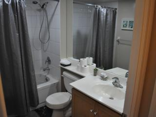 Downtown 1 Bedroom with Parking - Toronto vacation rentals