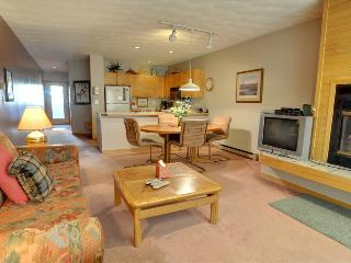 EAST BAY 1st Floor, 1 Bed/1 Bath on Lake Dillon, Spectacular Views, Covered Parking, WiFi - Dillon vacation rentals