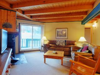 TREEHOUSE 107: Ground Floor 2 Bed/2 Bath, Great Location for Summer & Winter, Wifi, Large Clubhouse - Silverthorne vacation rentals
