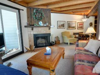 TREEHOUSE 108: Cute 1 Bed/1 Bath Condo, Sleeps 5, Ground Floor, Large Clubhouse, Hiking, Free Bus - Silverthorne vacation rentals