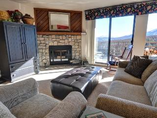 BUFFALO RIDGE 205: 2 Bed/2 Bath, Family Friendly Condo That Sleeps 6 with Access to Clubhouse, Hikin - Silverthorne vacation rentals