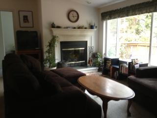 Privacy, sunshine, spring fed pond, mountain views - Smith River vacation rentals