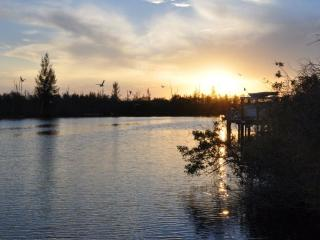 Canal front-pool home facing unbuildable mangroves - Cape Coral vacation rentals