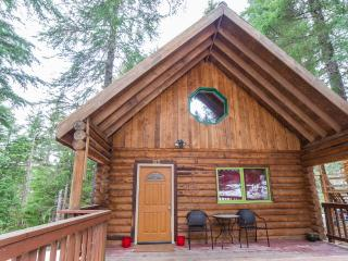 Cozy Log Cabin in Forest by Alyeska - Hope vacation rentals