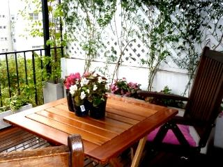 Sunny and Spacious 2 stories flat w lovely terrace - Capital Federal District vacation rentals