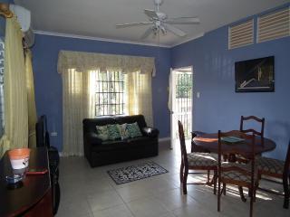 Beautiful Apartment in Liguanea - Kingston vacation rentals