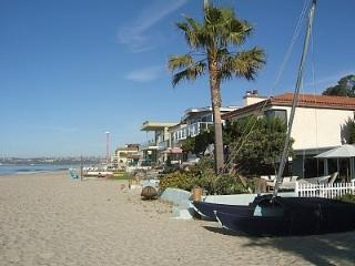 Lower Level Villa on the Sand - Capistrano Beach vacation rentals