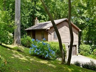 Asheville Lover's Loop - Mountain Setting/View, 8 - Horse Shoe vacation rentals