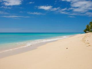 2 Bedroom Beachfront Apartment - Saint Michael vacation rentals