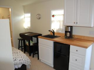 Charming Old Town Cariage House Just Blocks from CSU & Historic Old Town - Fort Collins vacation rentals