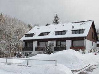 Vacation Apartment in Sankt Andreasberg - idyllic, stylish, comfortable (# 5156) - Sankt Andreasberg vacation rentals