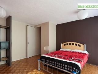 BB Mexico s/b, Courtesy airport pick up - Mexico City vacation rentals
