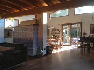 Beautiful villa on Lake Maggiore - Lake Maggiore vacation rentals