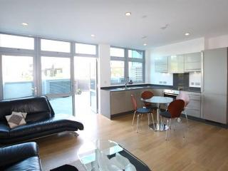 Charming apartment in Central London Zone 2 - London vacation rentals