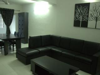 Angson Apartment-3 BHK-Greams Road - Chennai (Madras) vacation rentals
