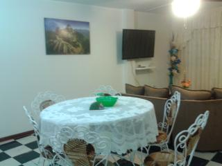 New Apartment furnished in Los Olivos - Lima - Lima vacation rentals