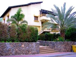 Private Galilee Country Villa - Stunning Views - Yavne'el vacation rentals