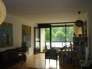 92 m2 near historic center - Copenhagen vacation rentals