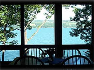 Luxury Sunflower Apartment  on Seneca Lake NY - Finger Lakes vacation rentals