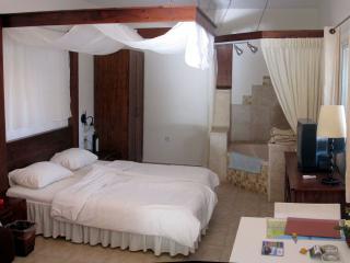 Galilee -Private Garden Studio Apt -Near TIberias - Yavne'el vacation rentals