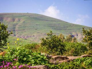 Galilee - Garden 2 Bedroom Apt near Tiberias - Yavne'el vacation rentals