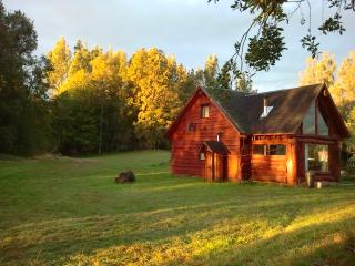 Holiday house on a great location - Panguipulli vacation rentals