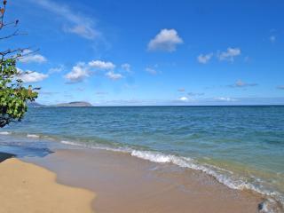 Kahala Bungalow - 1 Block to beach access!! - Honolulu vacation rentals
