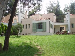 KASSANDRA SANI  VILLA IN THE FOREST, NEAR THE SEA - Kalandra vacation rentals
