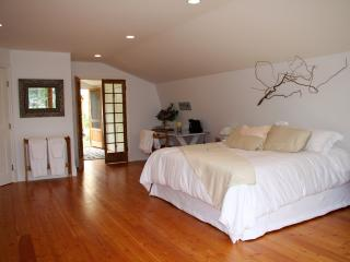 Penticton spacious luxury studio - Penticton vacation rentals