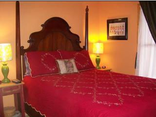 LAST MINUTE-$95nt, slp8 petok, w/d, FP, near Plaza - Santa Fe vacation rentals