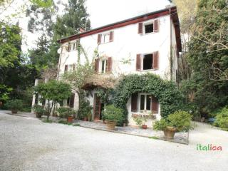 Holiday House in the Nature - Pietrasanta - Pietrasanta vacation rentals