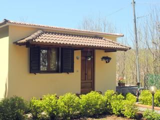 Casa Roberta, pretty apt surrounded by greenery - Sant'Agata sui Due Golfi vacation rentals