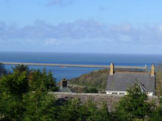 Five Star Holiday Cottage - Cadiz, Fishguard - Saint Dogmaels vacation rentals