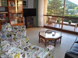Beautiful Apartment, Aix en Provence - Venelles vacation rentals
