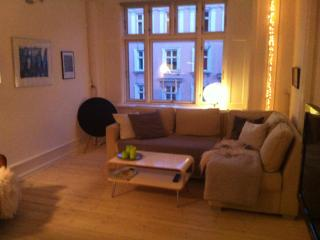 Attrative light apartement by The Lakes in Copenh. - Osterbro vacation rentals